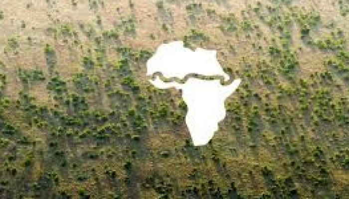 KIU International Desk: The Great Green Wall Project